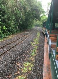 Trem até o início da trilha